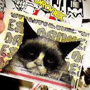 cat-sticker-dronex