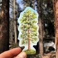 forest_sticker_tree_sticker