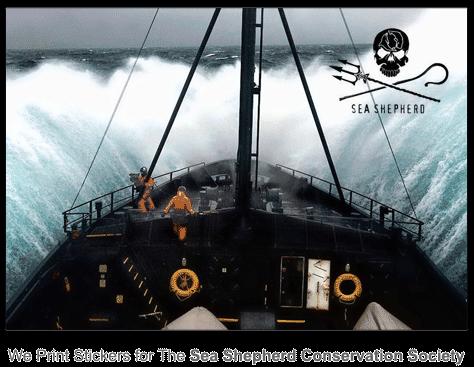 Sea Shepherd Outdoor Vinyl Stickers