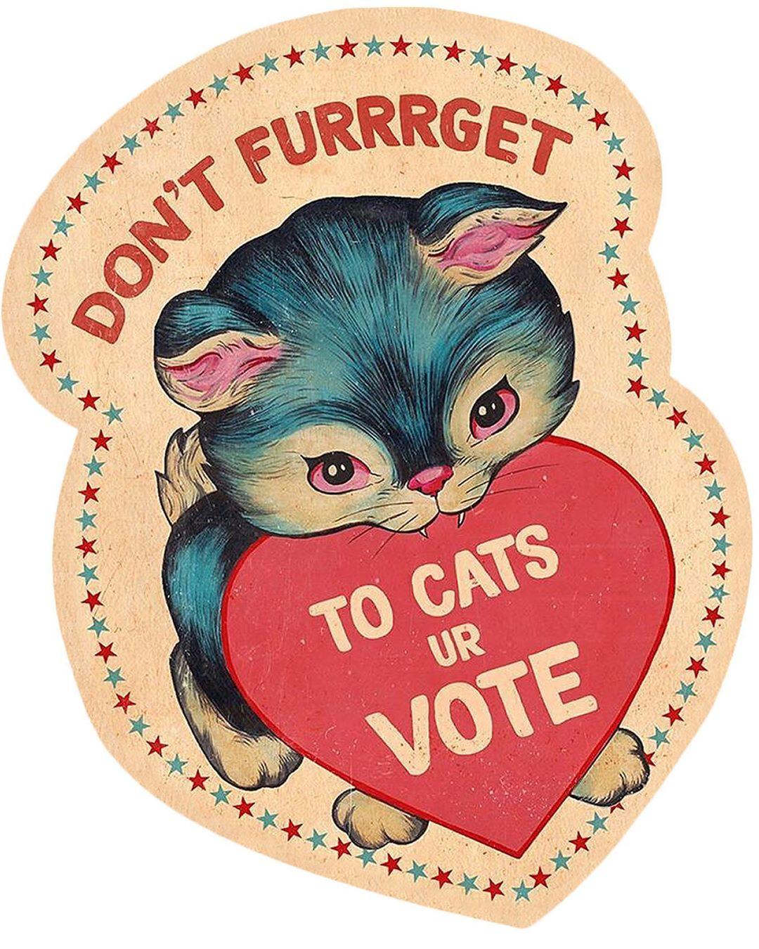 Casey Weldon Cats Your Vote Sticker